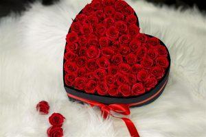 Burhaniye Özür Dileme Çiçek Hizmeti